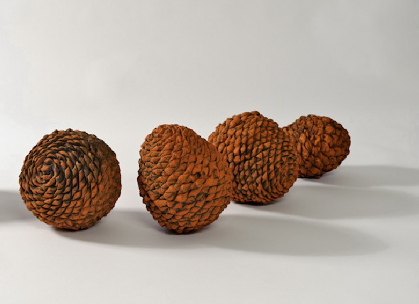 _divide_, 2012, earthenware ceramics, 28cm(h)x250(l)x50(w), photographer – Gary Mitchell