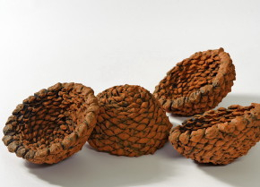 _bunya bowls_, 2012, earthenware ceramics, 20cm(h)x40(l)x30(w), photographer – Gary Mitchell